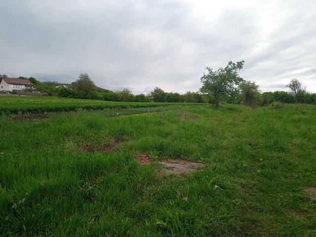 Picture of Teren intravilan - Zona Gusterita in Sibiu